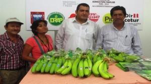 El proyecto cuenta con un presupuesto de 9 millones de soles   Fuente: Cortesía (Dirección de Agricultura)