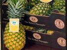 chfusa_pineapple_11.3.15