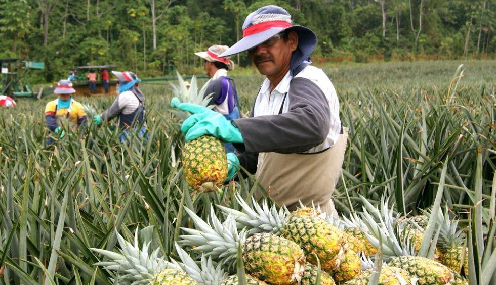 La Reforma Procesal Laboral-RPL, COSTA RICA.